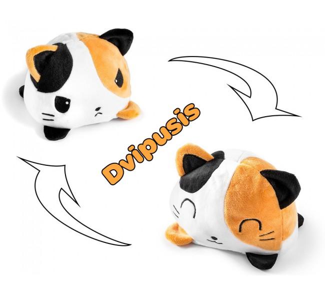 Dvipusė katė